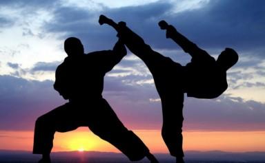 Karate_04-1024x686-980x610-2z9rt6l25kmyvumc7p7ymi